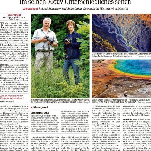 """""""Im selben Motiv Unterschiedliches sehen"""" (Heilbronner Stimme, 22.06.2013, S. 36)"""